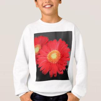 Antikes Gänseblümchen Sweatshirt
