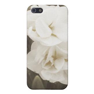Antikes Narzissen-Foto iPhone 5 Cover
