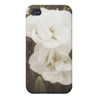 Antikes Narzissen-Foto Schutzhülle Fürs iPhone 4