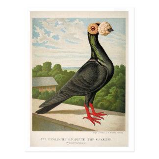 Antikes Taube litho welches die Fördermaschine Postkarte