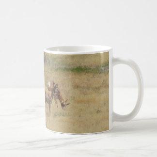 Antilope, die in Utah scherzt Kaffeetasse