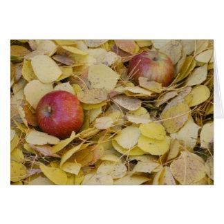 Äpfel aus den Grund Grußkarte