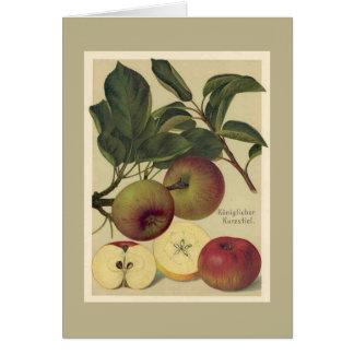 Apfel-botanische Frucht Grußkarte