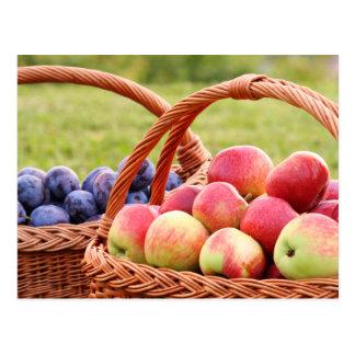 Apfel-und Pflaumen-Postkarte Postkarte