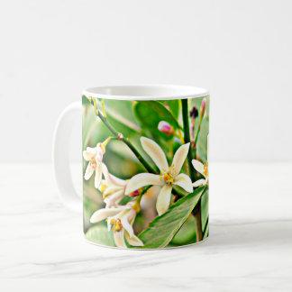 Apfelbaum blüht klassische Kaffeetasse