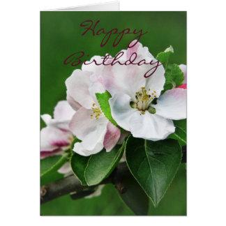 Apfelbaum-Blüten-Karte Karte