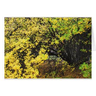 Apfelbaum-Herbst Karte
