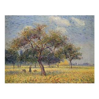 Apfelbäume Gustave Loiseau- Im Oktober Postkarte