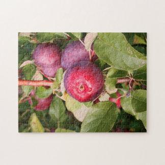 Apfelgärten Vermont Puzzle