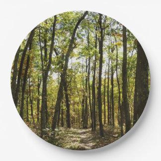 Appalachische Spur im Oktober bei Shenandoah Pappteller