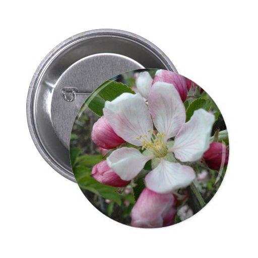 Apple blühen anstecknadelbutton