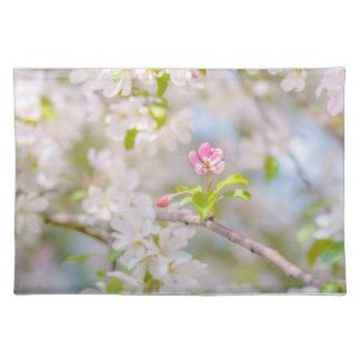 Apple blühen - Schönheit Stofftischset