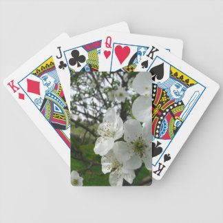 Apple-Blüten Bicycle Spielkarten
