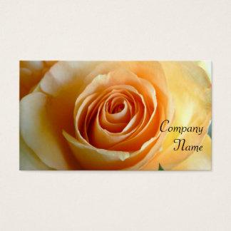 Aprikosen-Rose Visitenkarte