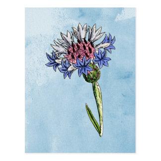 Aquarell-Distel Postkarte
