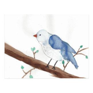 Aquarellvogel scherzt Kunst Postkarte
