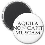 Aquila nicht Capit Muscam Kühlschrankmagnet