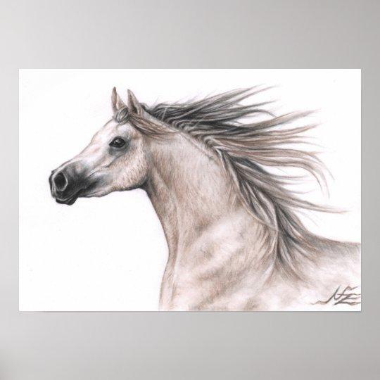Araber Portrait - Arabian Horse Poster