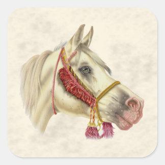 Arabischer Stallion Quadratischer Aufkleber
