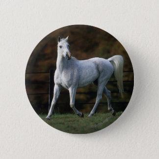 Arabisches Pferd, das 1 laufen lässt Runder Button 5,1 Cm