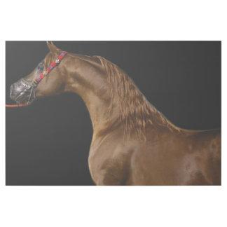 Arabisches Pferd Galerieleinwand