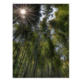 Arashiyama Bambuswaldung - Kyoto Japan Postkarte