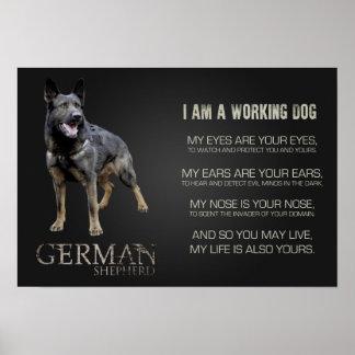 Arbeitender Schäferhund-Hund - GSD Poster