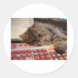 Arbeitet für eine Katzenminze Runder Sticker