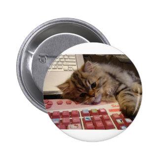 Arbeitet für eine Katzenminze Buttons