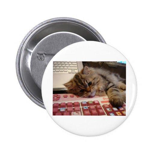 Arbeitet für eine Katzenminze Button