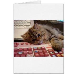 Arbeitet für eine Katzenminze Grußkarte