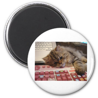 Arbeitet für eine Katzenminze Kühlschrankmagnet