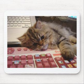 Arbeitet für eine Katzenminze Mauspads