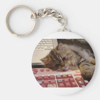 Arbeitet für eine Katzenminze Schlüsselband