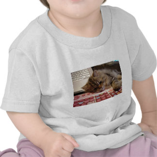 Arbeitet für eine Katzenminze T-shirt