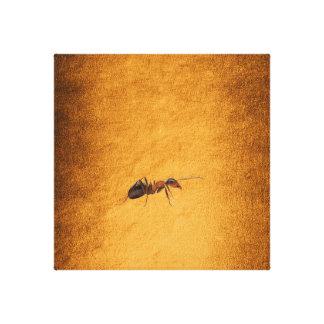 Arbeitsam wie der Ameisen-goldene Hintergrund Leinwanddruck