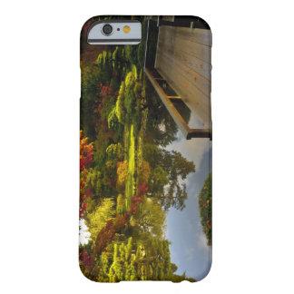 Arboretum, japanischer Garten, Seattle, Barely There iPhone 6 Hülle