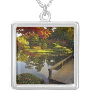 Arboretum, japanischer Garten, Seattle, Versilberte Kette