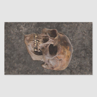 Archäologie II - Schädel auf Stein-Effekt Rechteckiger Aufkleber