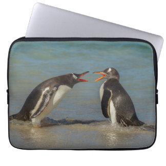 Argumentierende Pinguine, Falklandinseln Laptop Sleeve