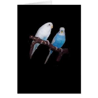 Ariel und Oscar budgie Karte