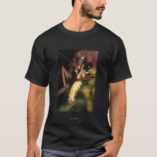 Aristoteles T-Shirt