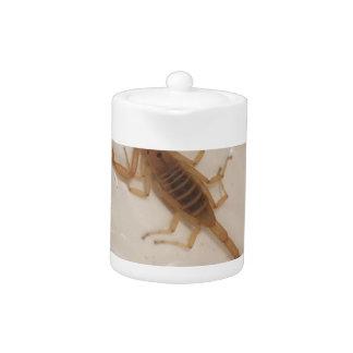 Arizona-Barken-Skorpion
