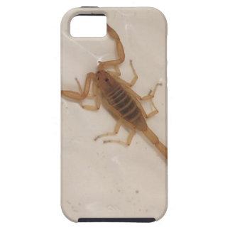 Arizona-Barken-Skorpion Etui Fürs iPhone 5