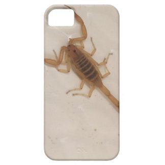Arizona-Barken-Skorpion iPhone 5 Etui