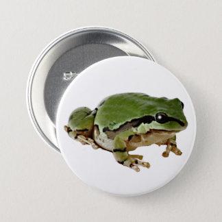 Arizona-Baum-Frosch-Nahaufnahme-Fotografie Runder Button 7,6 Cm