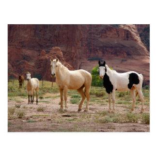 Arizona, Navajo-Indianerreservat, Chinle, Postkarte