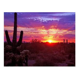 Arizona-Sonnenuntergang Postkarte