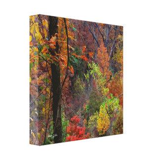 Arkansas-Herbst-Landschaft eingewickelte Leinwand