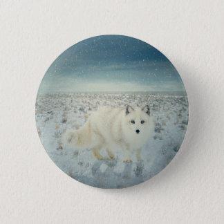 Arktischer Fox Runder Button 5,7 Cm